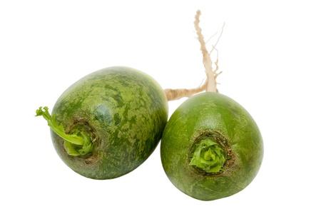 dikon: Rábano verde Dikon aislado en un fondo blanco Foto de archivo
