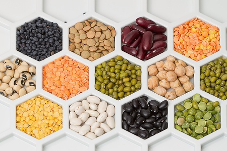 Various dry bean products in cellular cells
