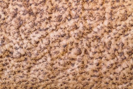 halibut: Beautiful natural background of leather halibut