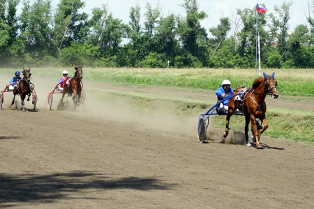 Tambov, Russian Federation - July 13, 2013: Sundays race racing trotters on the racetrack Tambov.  Sunny summer day