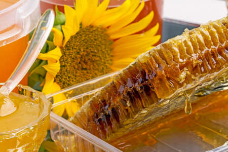 Honey in the comb,  sunflower and different varieties of honey Stock Photo - 22438313