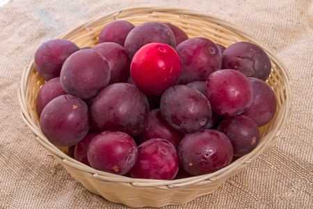 sacking: Ripe plums with wicker basket on sacking