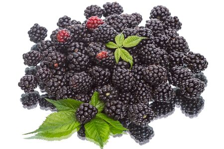 black mammoth: Heap of of ripe blackberry isolated on a white background