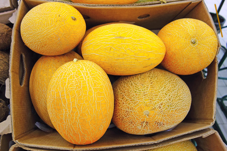 store shelf: Yellow melon in a box on the store shelf