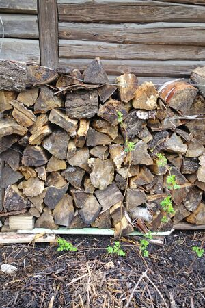log wall: Chopped firewood in a log wall of the old barn