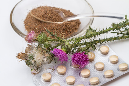 plant antioxidants: Silybum (milk thistle) is a genus of two species of thistles in the (daisy family).