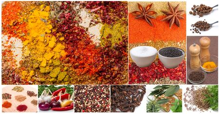 Collage of spices and seasonings on a white background