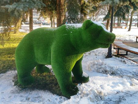 Topiary figure of a bear in a city square