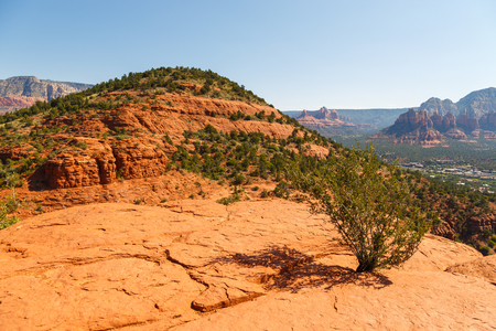 The natural beauty of the  rock canyons and sandstone of Sedona in Arizona. In the valley of the city Sedona.