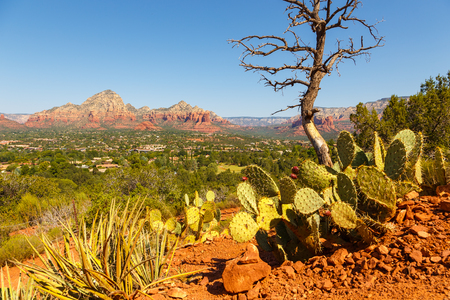 The natural beauty of the red rock canyons and sandstone of Sedona in Arizona. In the valley of the city Sedona.