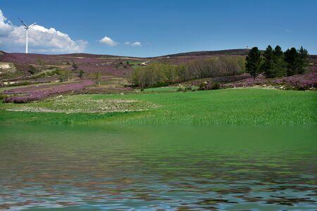 primavera, paesaggio e acqua riflessione Archivio Fotografico