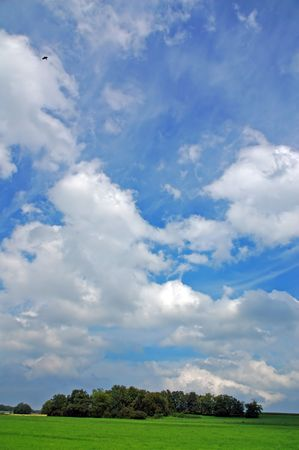 landscape with blue sky clouds and bird Stock Photo