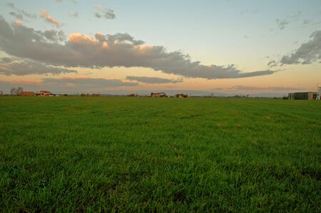 erba verde e tempesta cielo rosso Archivio Fotografico