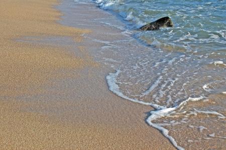 pilgramige: Footprints going over a sand dune