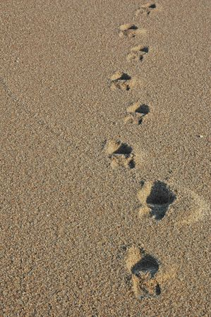 Footprints going over a sand dune Stock Photo - 17075092
