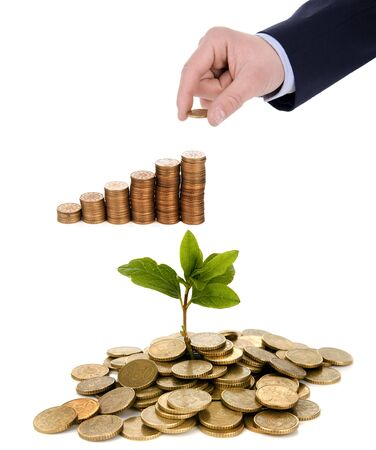 business concepts - hand holding coin and plant born in coins isolated