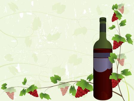 Wine bottle and vine background Vector