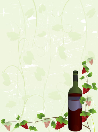 Wine bottle and vine background Vector