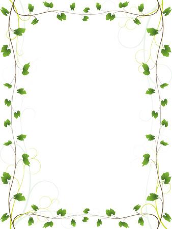 boarder: Vine frame Illustration