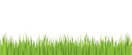 Seamless spring grass vector Stock Vector - 4022129