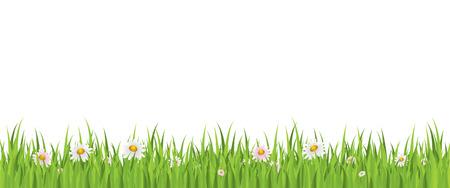 bordures fleurs: Fleurs de printemps et de l'herbe sans soudure de fond Illustration