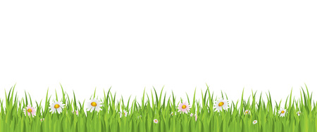 Spring flowers and grass seamless background Vector