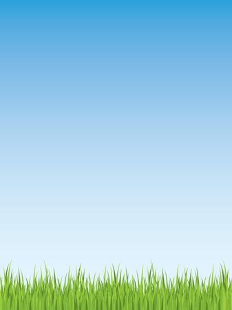Spring grass illustration (seamless)