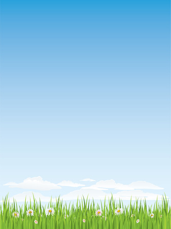 Spring grass and flowers.  Seamless illustration. Stock Vector - 4315439