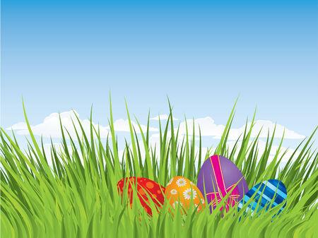egg hunt: Easter eggs hiding in the grass Illustration