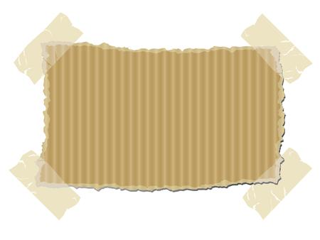Torn cardboard vector