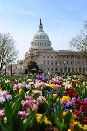 the senate: Capitol Hill Building, the symbolic landmark of US government