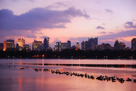 midtown manhattan: Sunset in Central Park, New York City, over lake with ducks. Stock Photo
