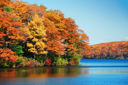 Autumn colorful foliage over lake with beautiful woods in red and yellow color.