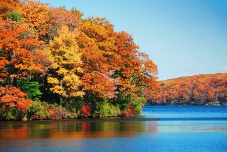 Jesienne ulistnienia kolorowe nad jeziorem z pięknym lasy w kolor czerwony i żółty.