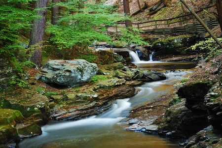 Creek with rocks and bridge in forest photo