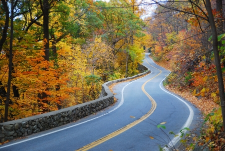 rural road: Winding road in Autumn woods with colorful foliage tree in rural area. Stock Photo