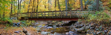 Autumn forest with wood bridge panorama over creek in yellow maple forest with trees and colorful foliage. photo