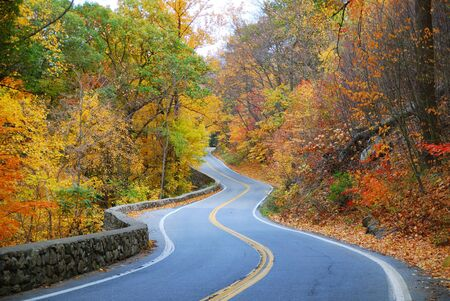 autumn road: Winding road in Autumn woods with colorful foliage tree in rural area. Stock Photo
