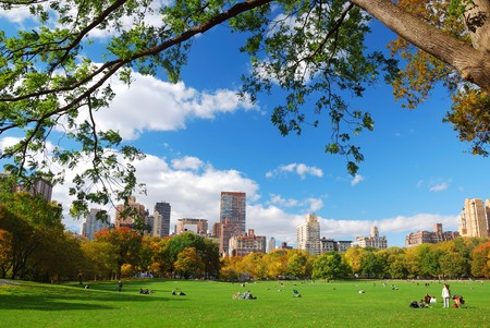 New York City Manhattan skyline panorama viewed from Central Park with cloud and blue sky and people in lawn.  Stock Photo - 8267633