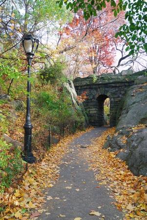 Stone bridge in Autumn in New York City Central park. Standard-Bild
