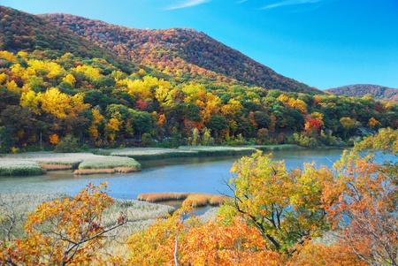 湖の景色と紅葉の森秋の山。