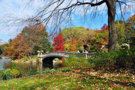 Panorama van de New York City Manhattan Central Park in herfst lake met brug wolkenkrabbers en kleurrijke bomen met reflectie.
