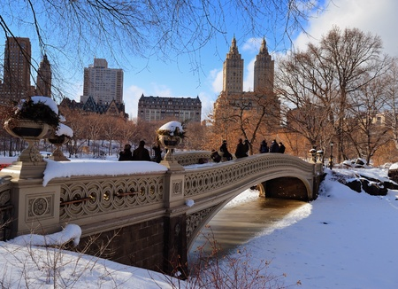 white winter: New York City Manhattan Central Park panorama in winter with ice and snow over lake with bridge,  skyscrapers and blue cloudy sky at dusk. Stock Photo
