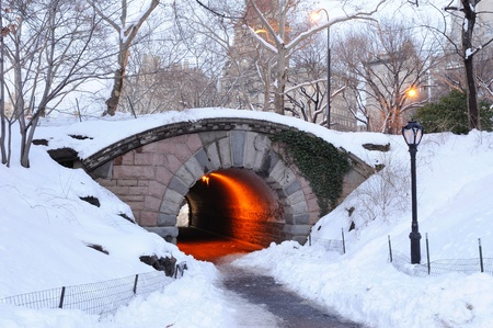 januar: New York City-Manhattan Central Park im Winter mit Br�cke.
