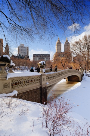 city park skyline: New York City Manhattan Central Park panorama in winter with ice and snow over lake with bridge,  skyscrapers and blue cloudy sky at dusk. Stock Photo