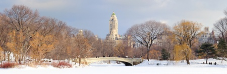 New York City Manhattan Central Park in winter with snow and city skyline with skyscrapers, bridge and cloudy sky. Stock Photo - 9366079