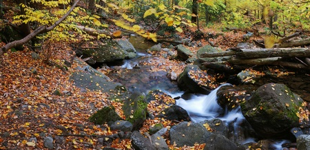 rock creek: Autumn creek closeup panorama with yellow maple trees and foliage on rocks in forest with tree branches. Stock Photo