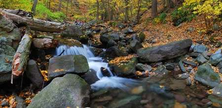 Autumn creek closeup panorama with yellow maple trees and foliage on rocks in forest with tree branches. photo