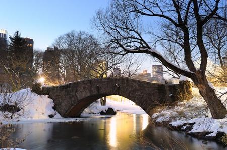 New York City Manhattan Central Park in winter with bridge. Standard-Bild