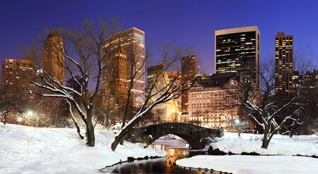 New York City Manhattan Central Park panorama in winter with snow, bridge; freezing lake and skyscrapers at dusk. Zdjęcie Seryjne